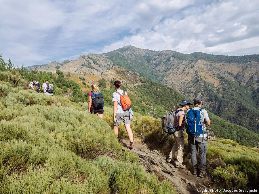 Randonnée sur le Mont Aigoual, dans les Cévennes