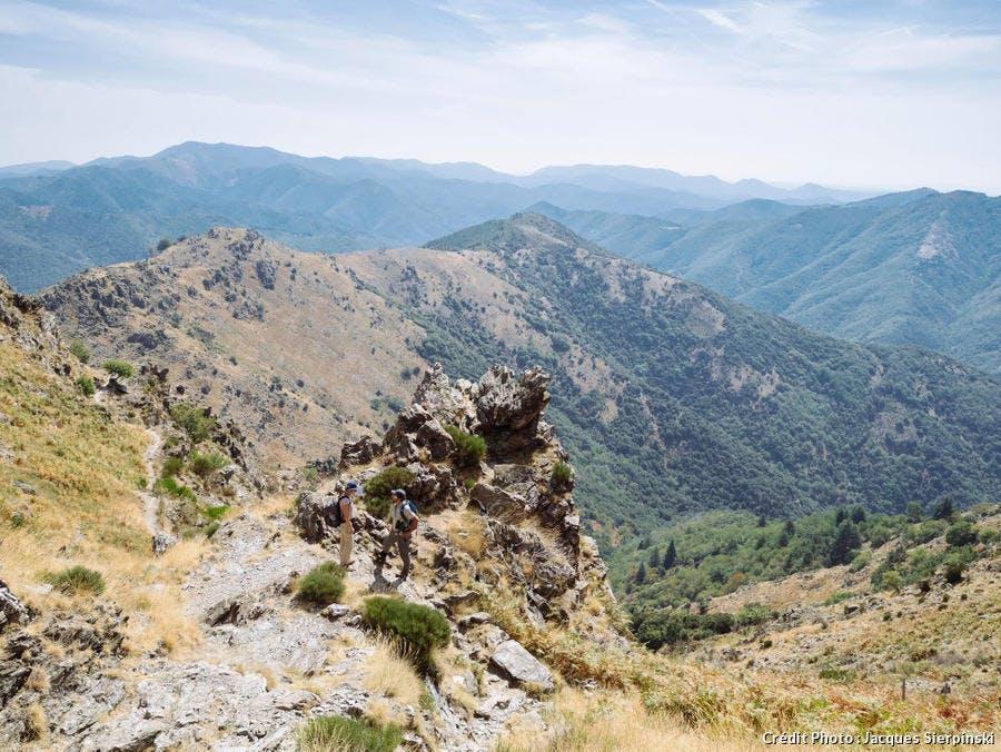 Paysage du Mont Aigoual, dans les Cévennes