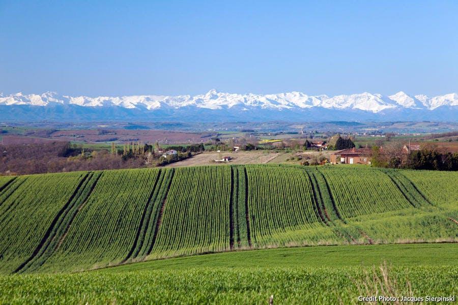 Vue de la chaine des Pyrénées depuis Montbrun-Lauragais (Haute-Garonne)