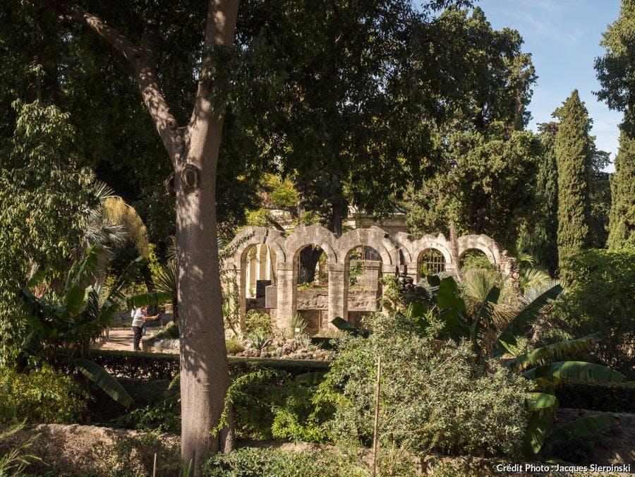 Montpellier, jardin des Plantes
