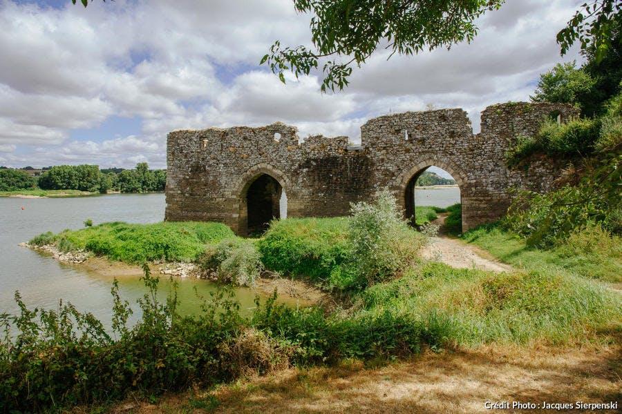 Champtoceaux et les ruines du Cul-du-Moulin
