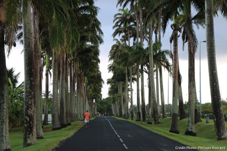 Le village de Capesterre Belle Eau, à Basse-Terre, en Guadeloupe