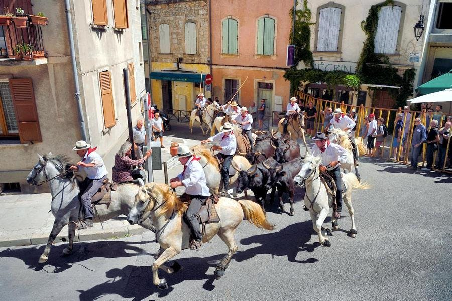 Gardians dans les rue d'Arles