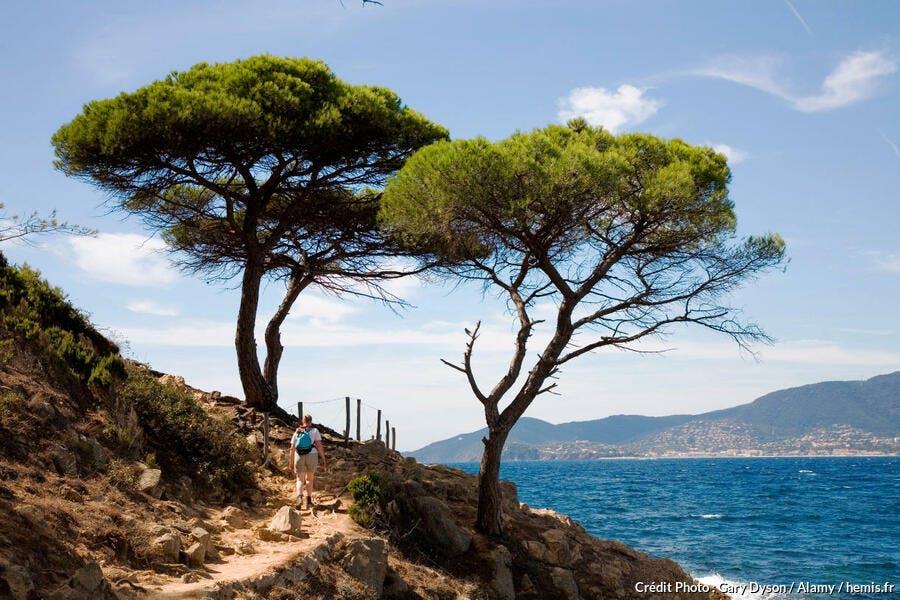 Le Cap Lardier sur le sentier des douaniers entre Cavalaire et Saint-Tropez