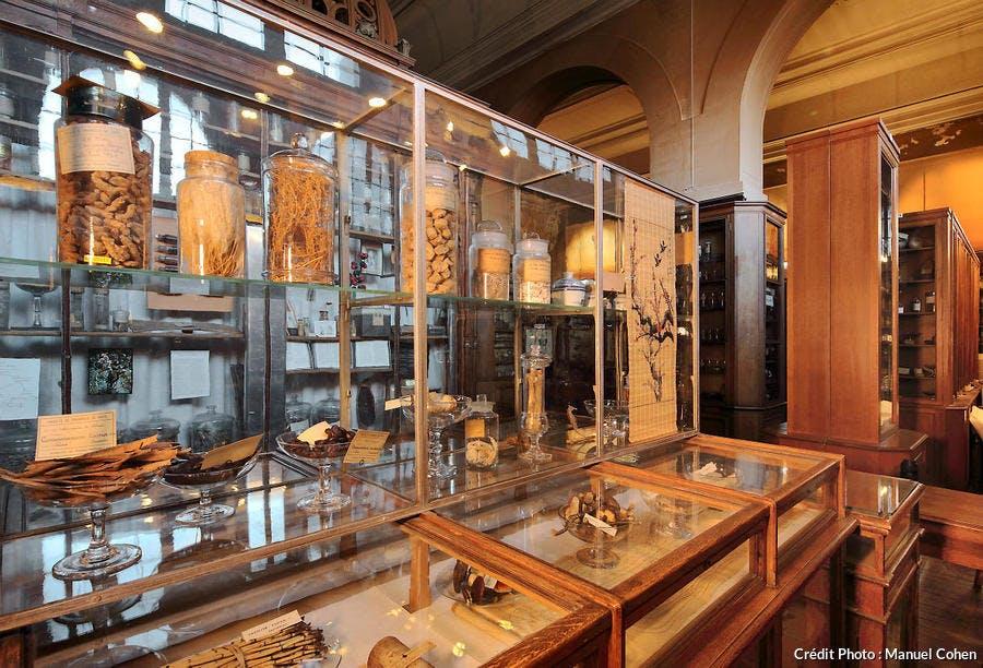 Substances médicinales exposées dans le musée François-Tillequin, à Paris