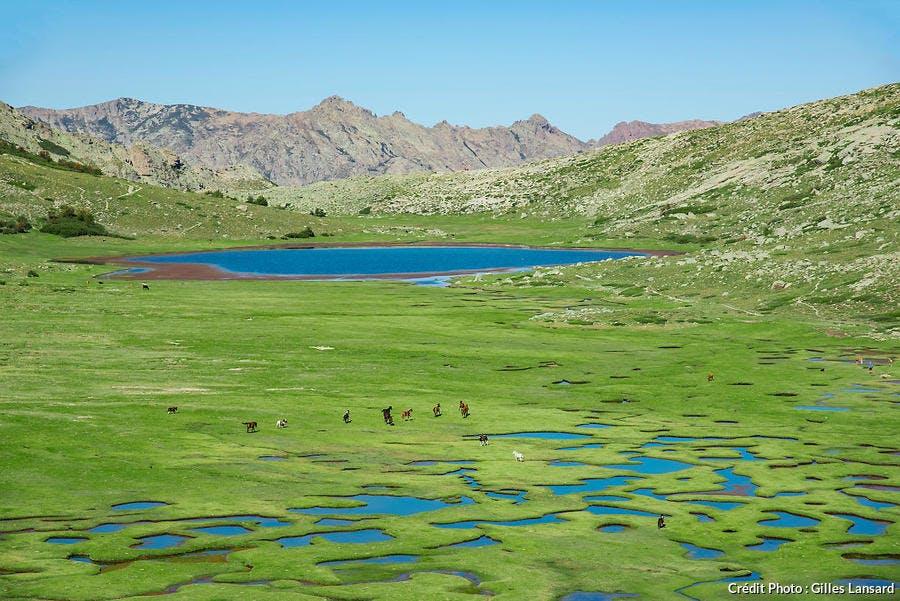 Lac de la Restonica sur le GR20