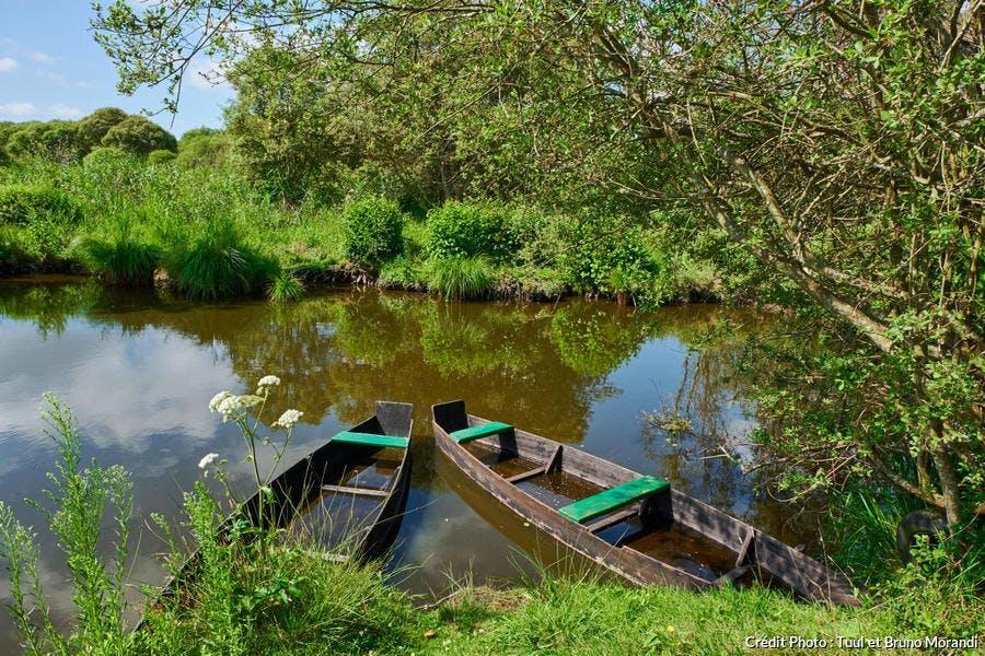 Barques dans le Parc Naturel Régional de Brière (Loire-Atlantique)