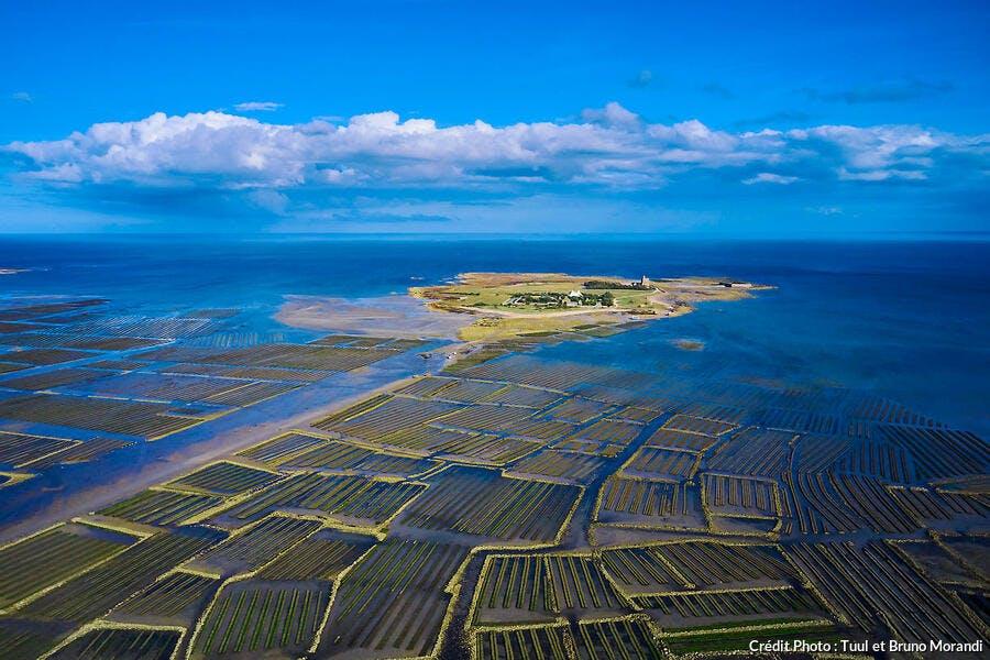 L'île de Tatihou et ses parcs à huîtres