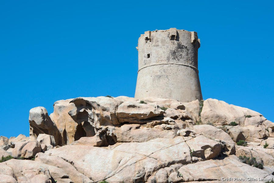 La tour Génoise de Campomoro