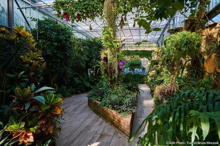 L'une des serres tropicales du parc du Moulin-à-Tan à Sens