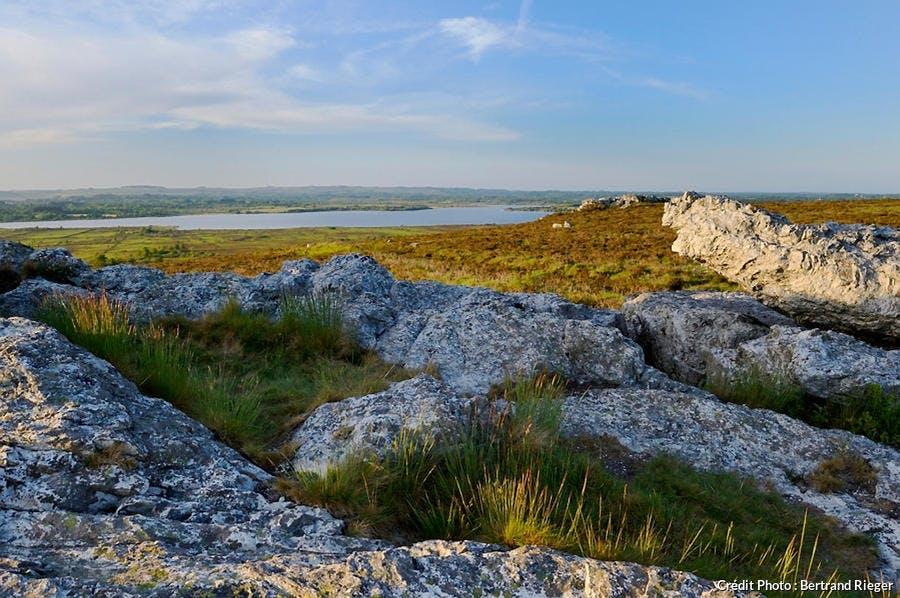 Monts d'Arrée, dans le parc naturel régional d'Armorique (Finistère)