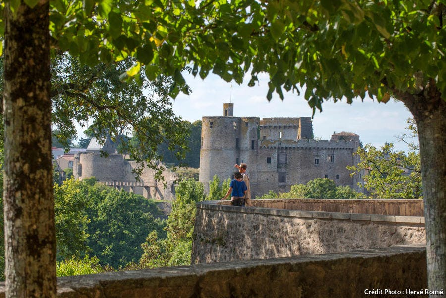 Le château de Clisson dans le vignoble nantais