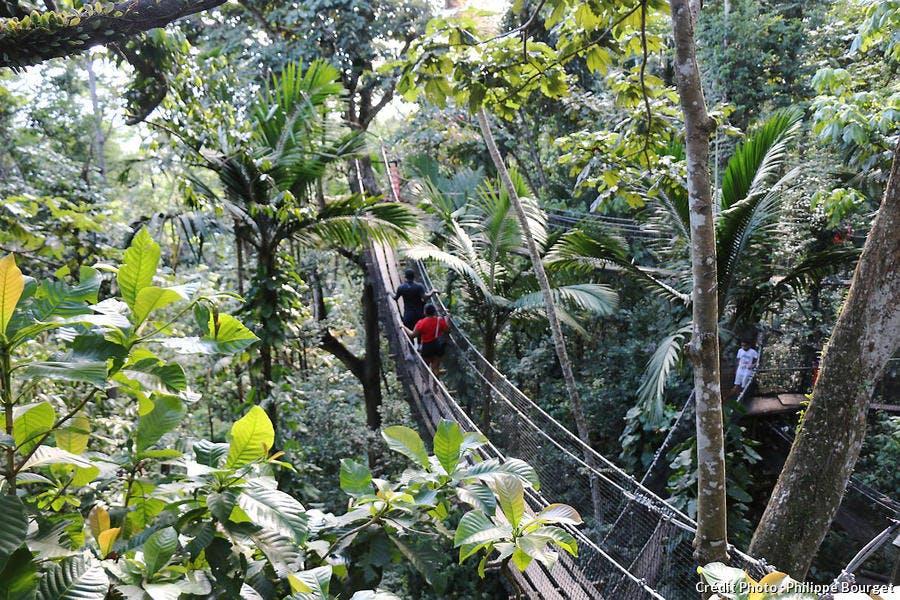 Le parc des Mamelles, à Basse-Terre, en Guadeloupe