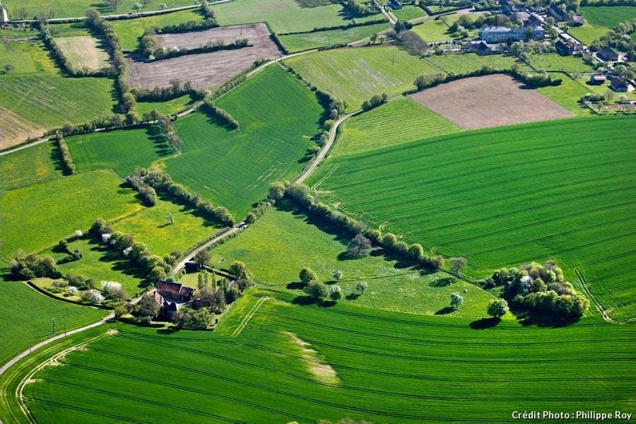 La Puisaye, paysage agricole de Bourgogne