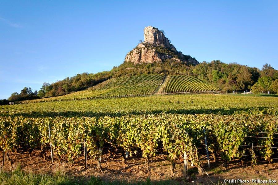 La roche de Solutré dominant le vignoble du Mâconnais, en Bourgogne