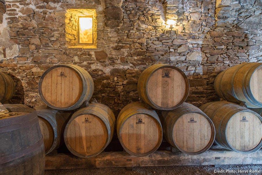 Château du Coing dans le vignoble nantais