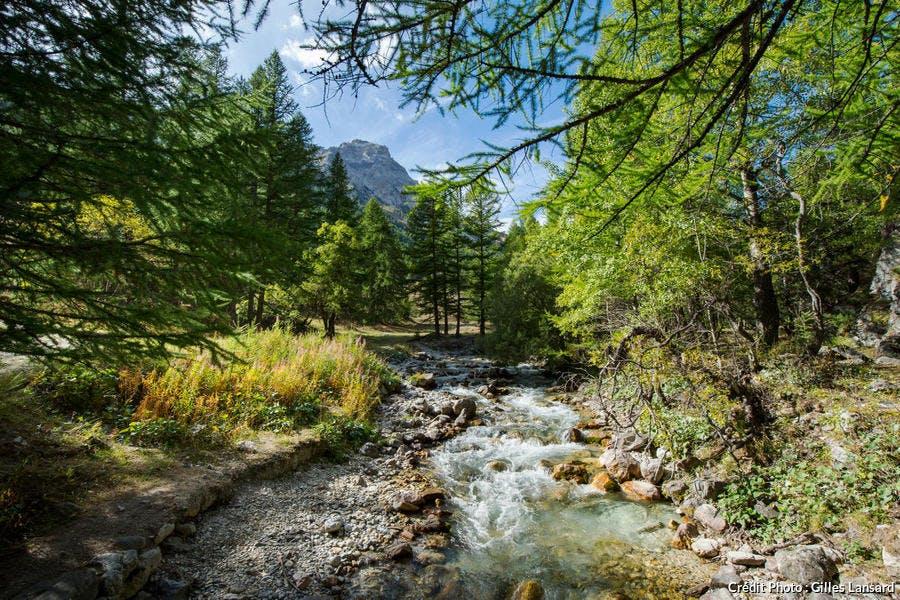 Névache, ruisseau de la vallée Étroite (Hautes-Alpes)