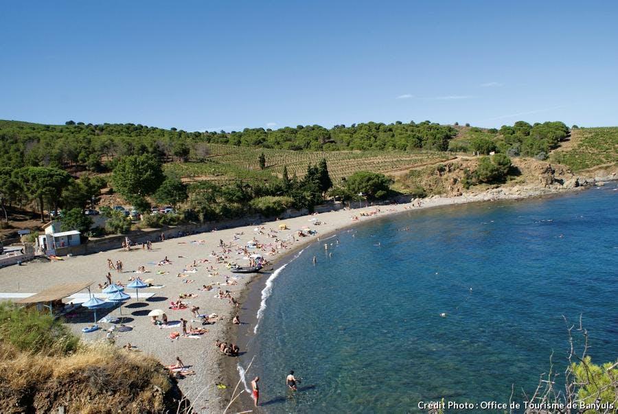 La plage du Sana à Banyuls-sur-Mer