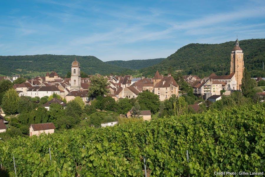 Panorama sur Arbois, depuis les vignes