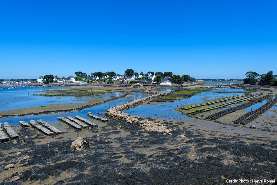 L'île de Berder dans le Morbihan