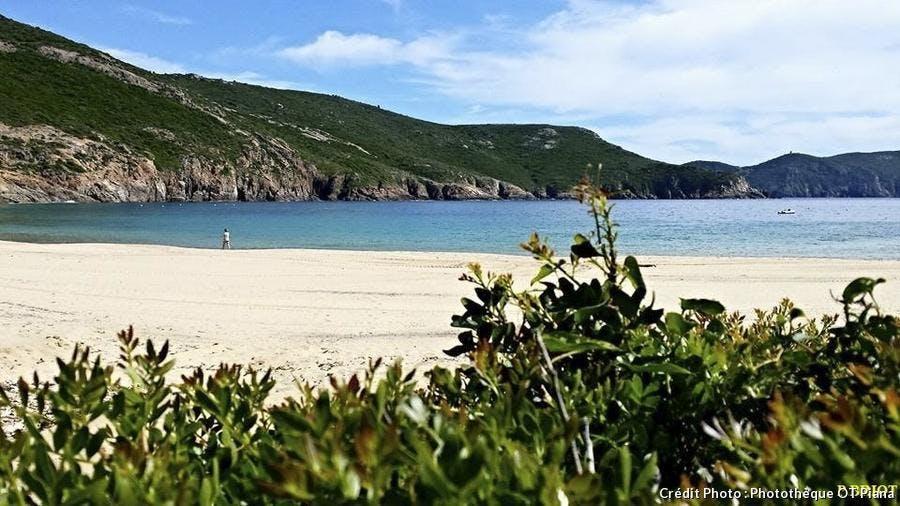 plage d'Arone