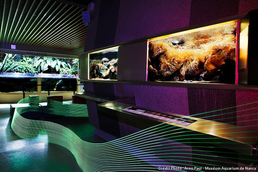 Le Museum-Aquarium de Nancy