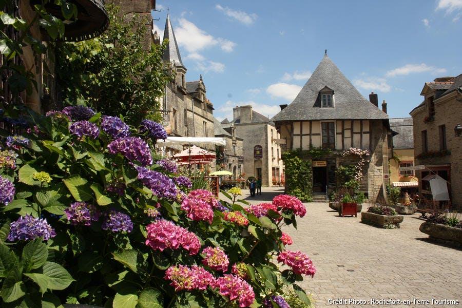Hortensias sur la place du Puits à Rochefort-en-Terre