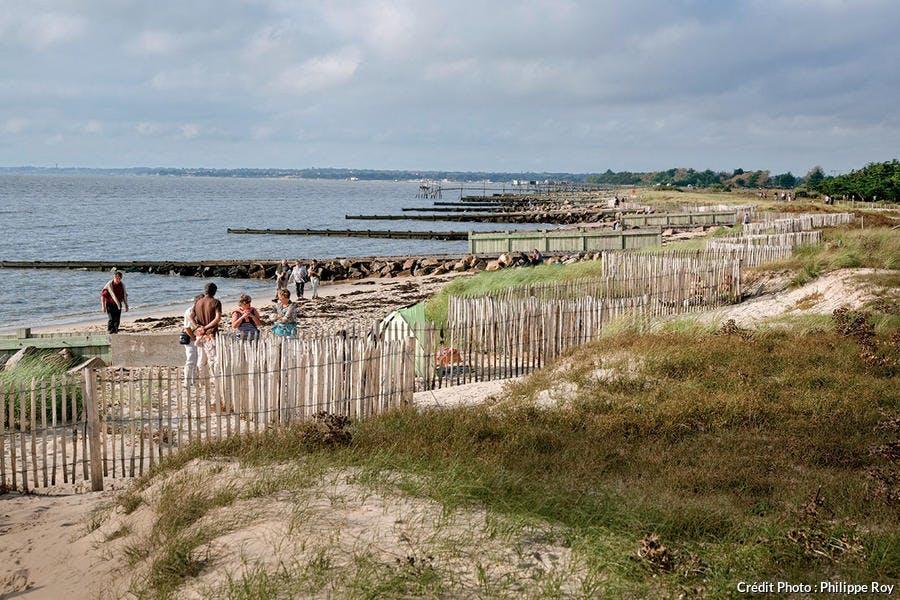 La baie de Bourgneuf