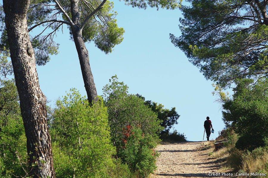 Sentier dans les alentours du barrage Zola