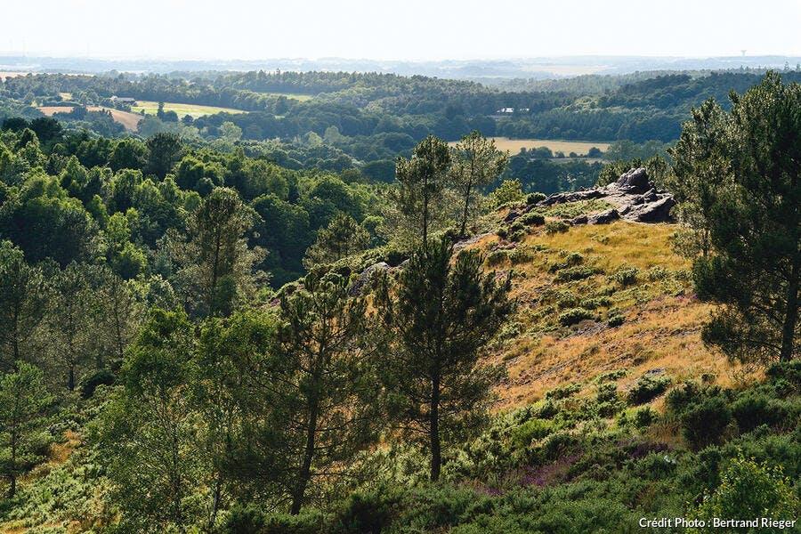 Forêt de Borcéliande - Le val sans retour