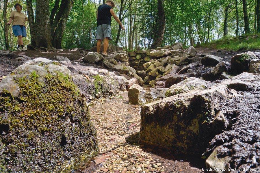 Forêt de Borcéliande - La fontaine de Barenton