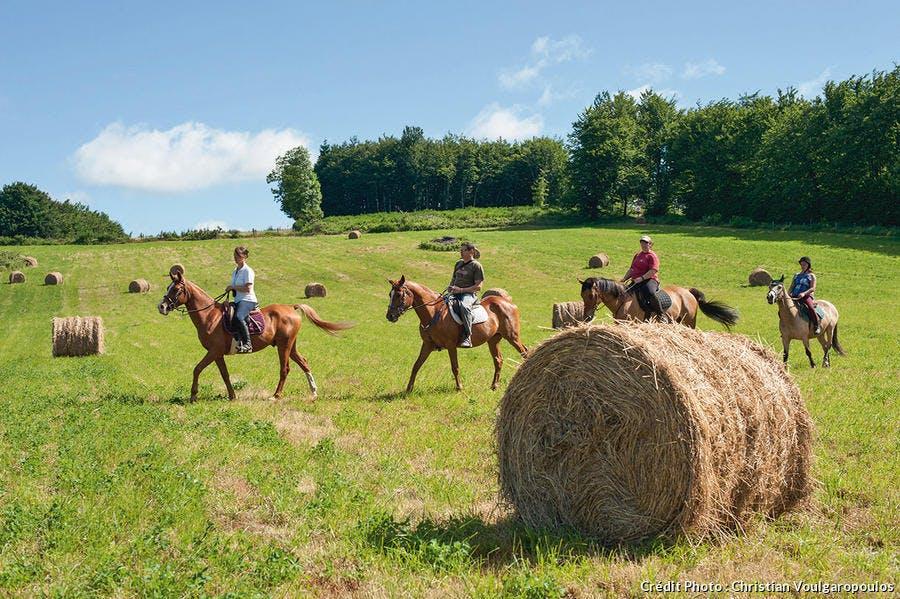 Randonnée à cheval sur la Montagne Noire