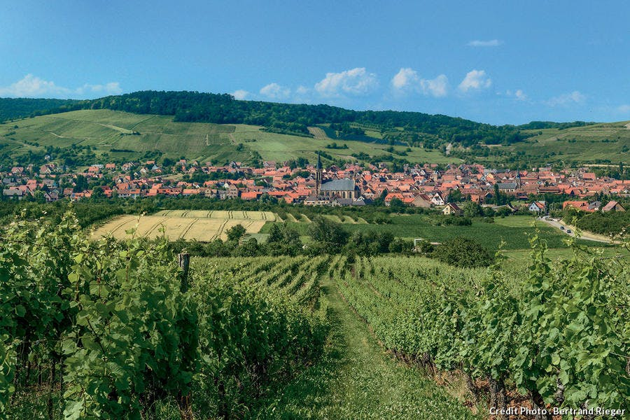 Westhoffen, village viticole.