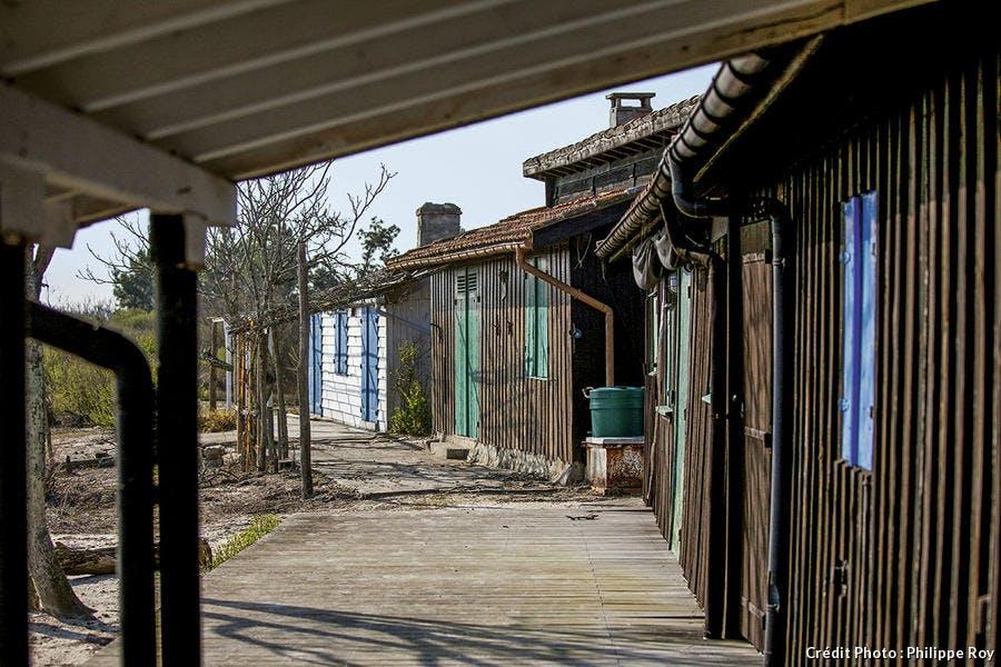 cabanes tchanquées de l'île aux oiseaux