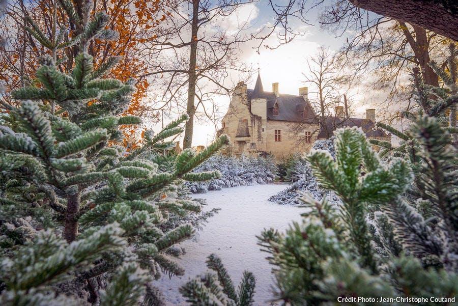 Chinon sous la neige