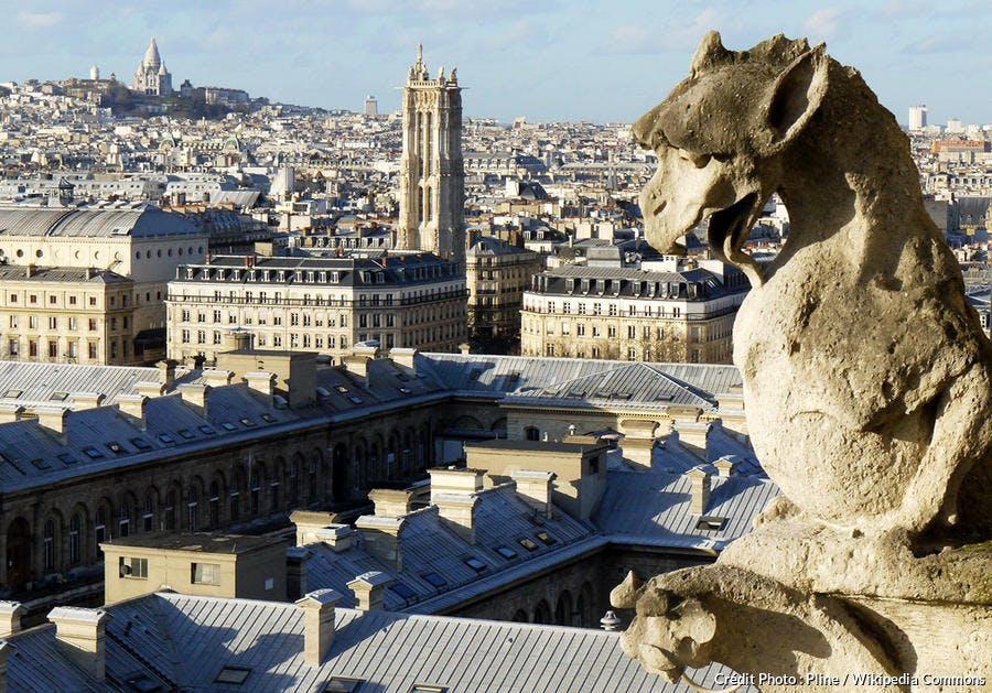Gargouilles de Notre-Dame de Paris