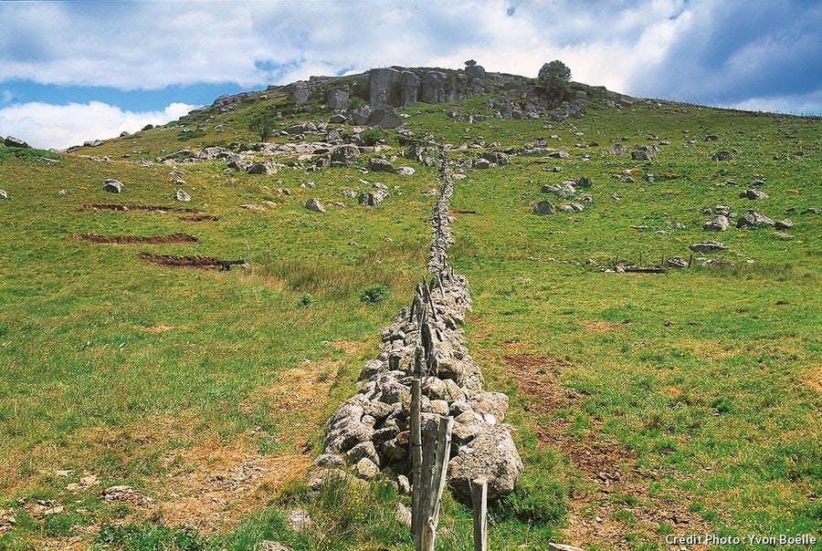 Plateau de l'Aubrac sur le chemin de Compostelle