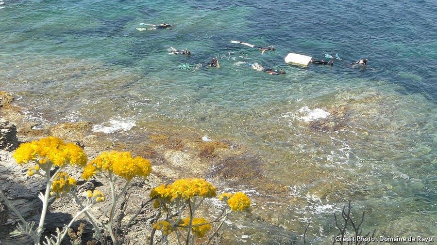 Sentier sous-marin du Rayol