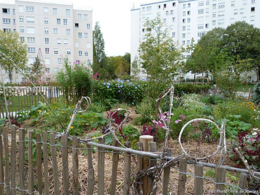jardins_familiaux_du_clos_toreau_ville_de_nantes