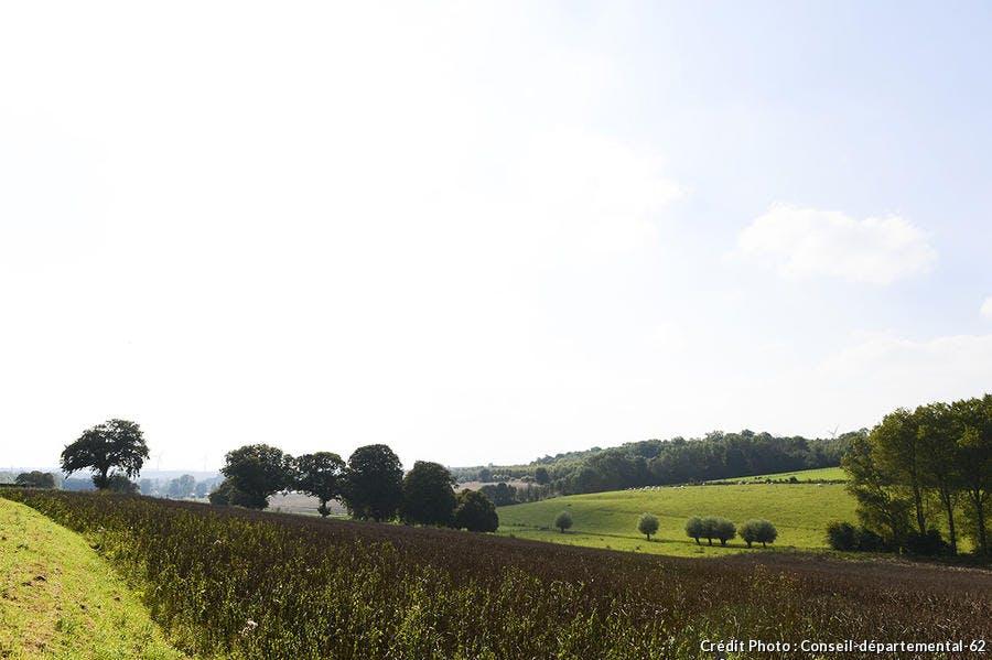 7 vallées-Ternois