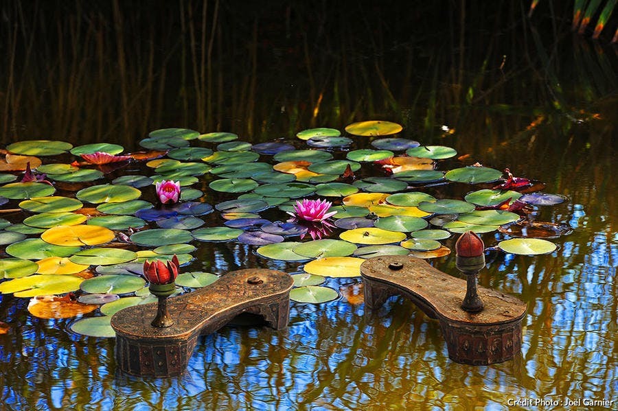 Chaussures lotus au musée international de la chaussure