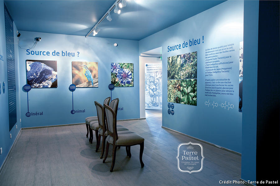museum_du_pastel5cterre_de_pastel.jpg