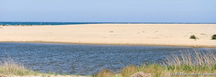 La plage du Bourdigou à Torreilles