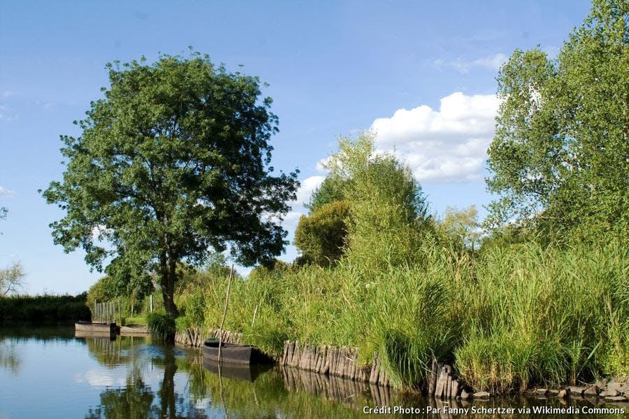 Le parc naturel de la Brière