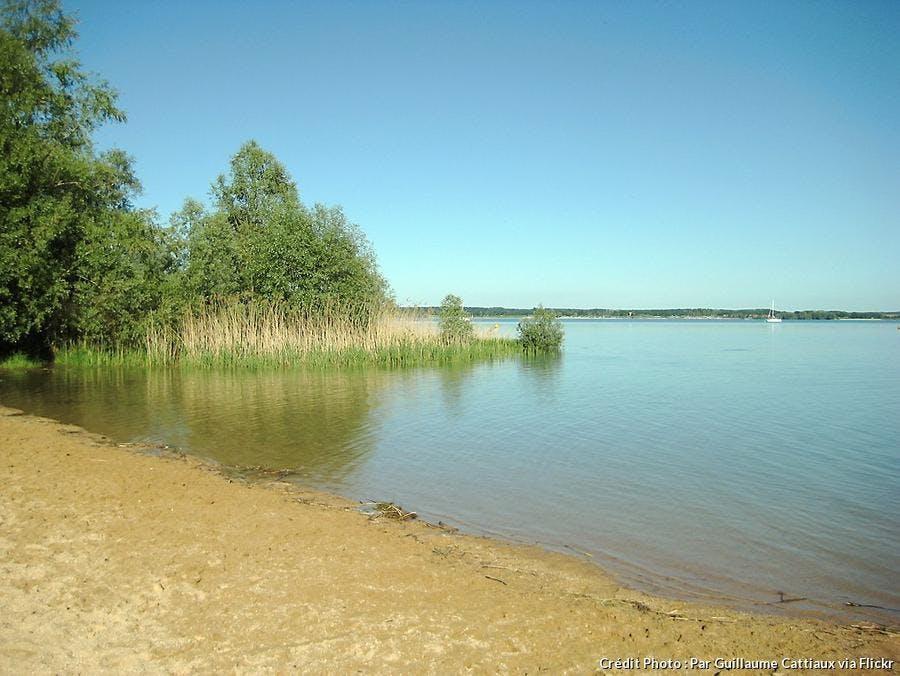 Le parc naturel régional de la Forêt d'Orient