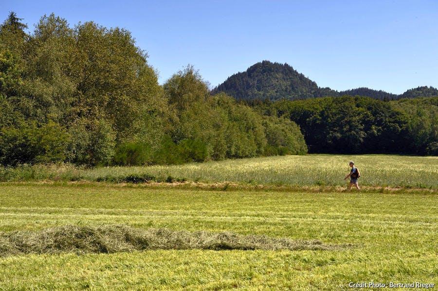 Randonnée entre puy Chopine et puy des Gouttes, Chaîne des Puys d'Auvergne