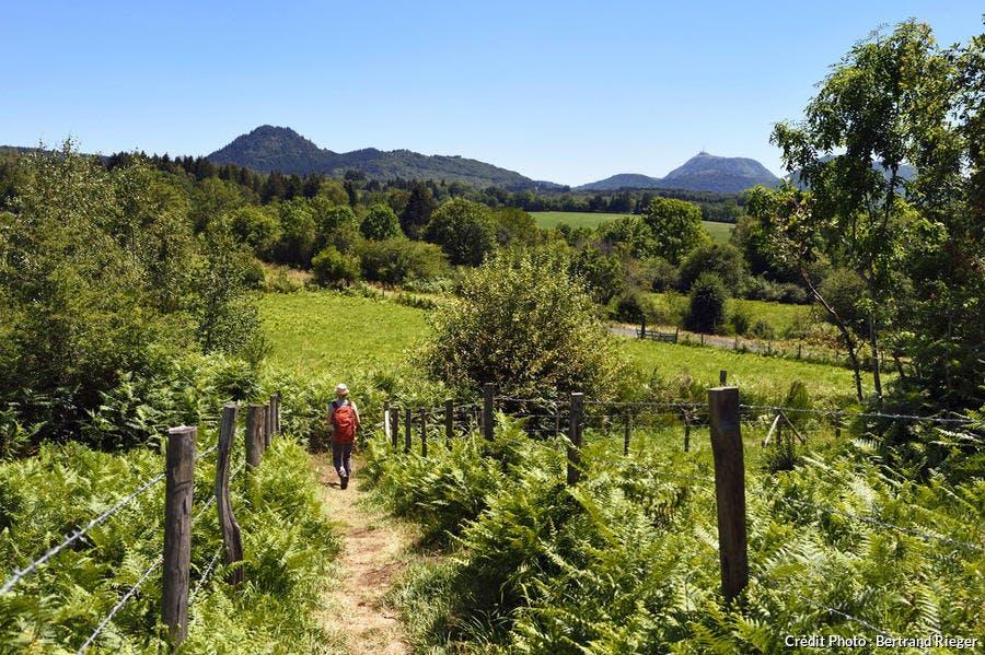 Randonnée entre puy de Jumes et puy de la Coquille, Chaîne des Puys d'Auvergne