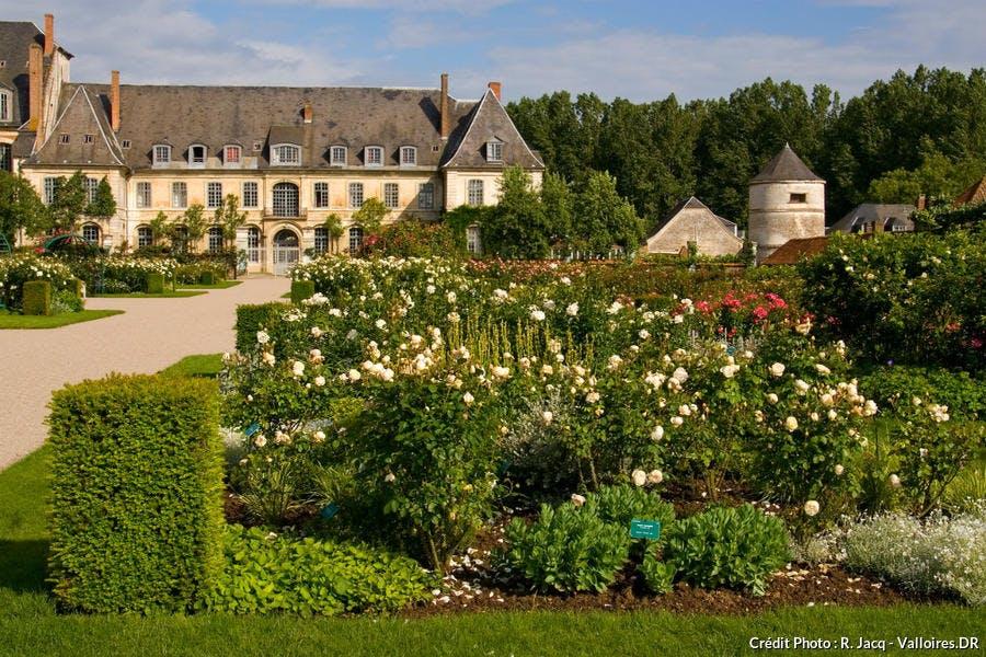 roseraie jardins de Valloires