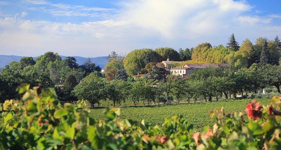 Domaine viticole du Château Sainte Roseline