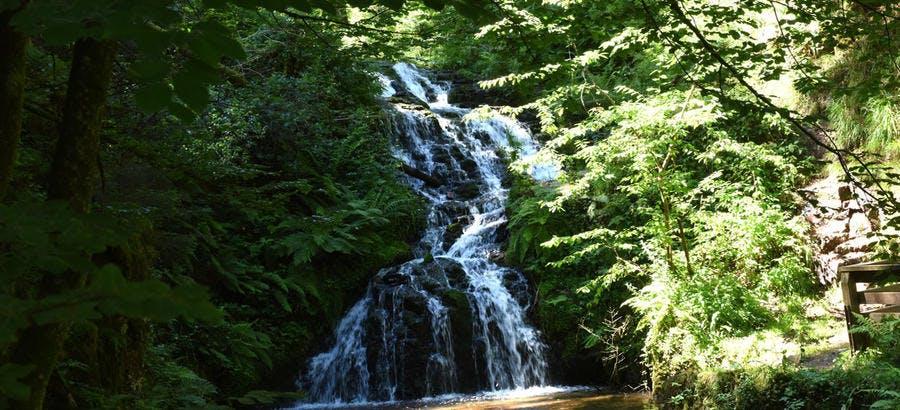 La cascade du Faymont dans les Vosges